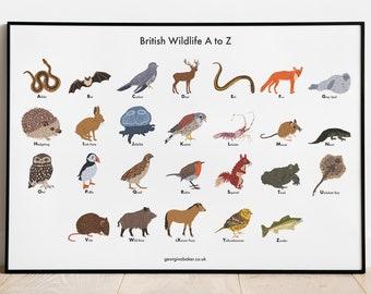 British Wildlife A-Z Poster A4/A3 - Animals Print Gift, Children's Bedroom Print, Birds, Mammals, Science Poster, Kids Decor Wall Art