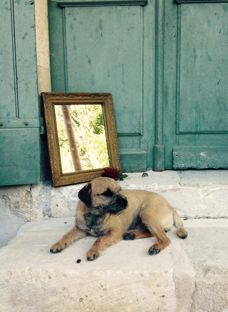 Antieke Spiegel Frans.Antieke Spiegel Frans Charmante Antieke Franse Gilt Gips Frame Spiegel Met Origineel Glas