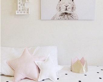 Standard Star Cushion