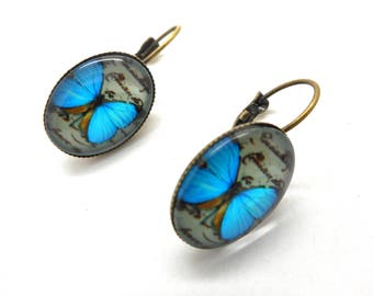 Turquoise Butterfly cabochon earrings