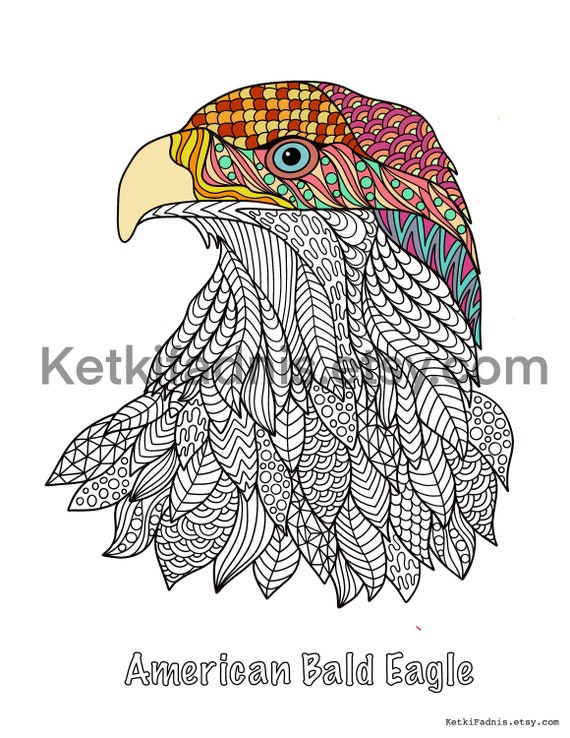 American Bald Eagle Coloring Page Bird Coloring Page PDF Etsy
