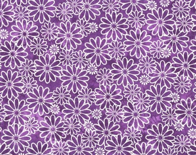 XXS-XXL Sundrenched Daisy Purple Bandana
