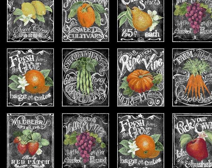 XXS-XXL Fruit and Veggie Seed Packets Bandana Bib