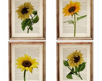 Sunflower kitchen decor | Etsy on sunflower bathroom set, sunflower bedroom set, kitchen bar set, sunflower dishes set, sunflower art set, sunflower bedding set, sunflower linens set, sunflower dinnerware set,