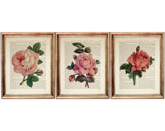 Pink Rose Art Picture Poster Photo Print 4FLR