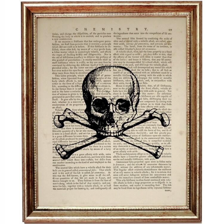 Chiropractic Wall Art, Anatomy Art, Anatomy Print, Skull and Bones ...