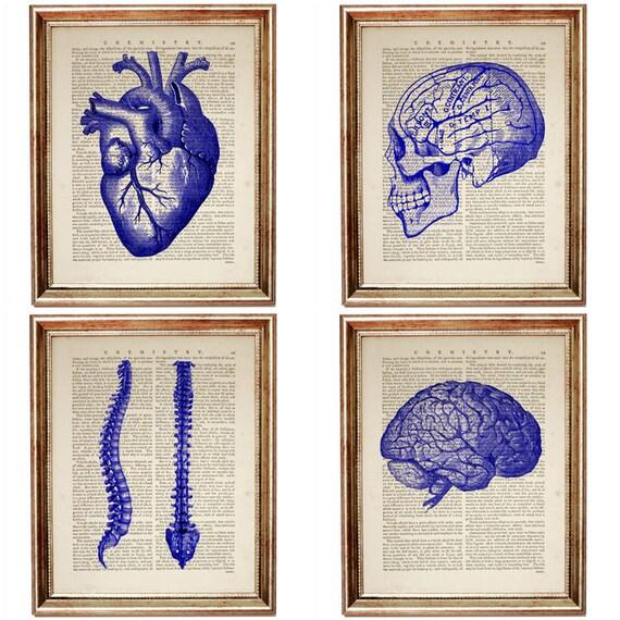 Cobalt Blue Wall Decor Set of 4 Prints Chiropractic Art | Etsy