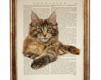 Maine Coon Cat, Maine Coon Art, Maine Coon Dictionary Art Print, Maine Coon Cat Breeds Poster Wall Hanging, Room Decor, Cat Lover Gift