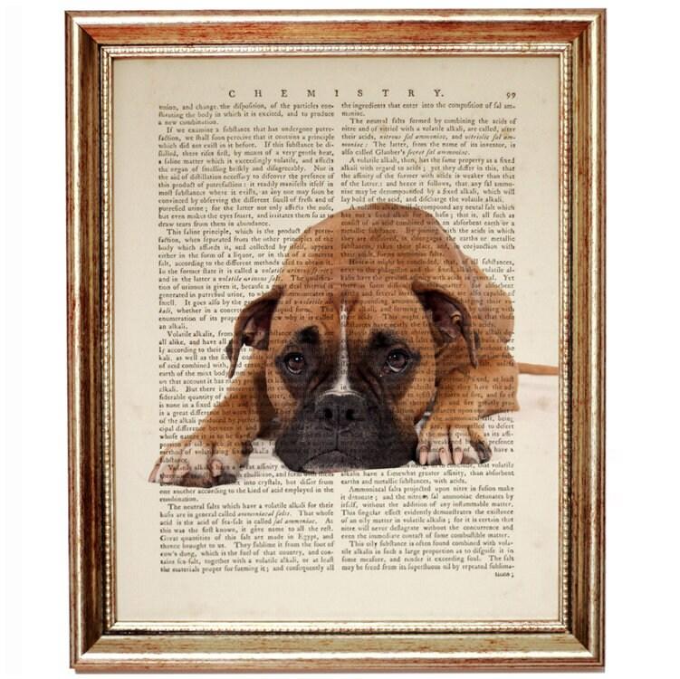 Boxer Dog Art Print, Boxer Dog Gifts, Dog Dictionary Print, Dog Book ...