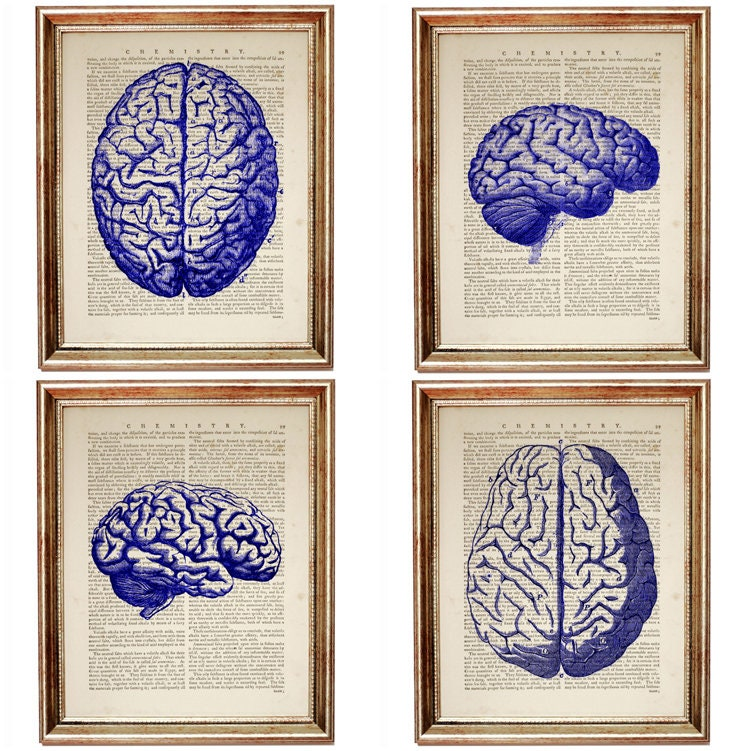 Cobalt Blue Wall Decor, Set of 4 Prints, Brain Art, Chiropractic ...