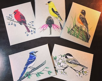 Bird Notecard Variety Pack #1.  Available in Plain, Happy Birthday, Thank You, or Thinking of You.  Great for Bird Lovers!