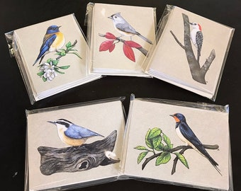 Bird Notecard Variety Pack #2.  Available in Plain, Happy Birthday, Thank You, or Thinking of You.  Great for Bird Lovers!
