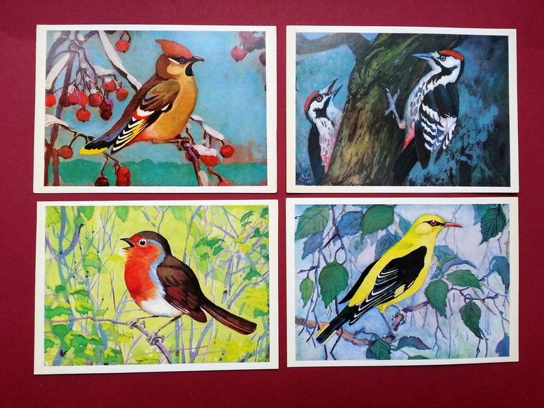 Set of 16 Vintage Postcards Albova Artist by N Birds of the Russian Forest 1979