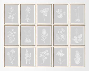 Light Gray Botanical Art Print SET of 15. Botanical Wall Art, Gray Wall Art, Gray Bedroom Art, Gray Wall Decor, Gray Botanical, Gray Kitchen