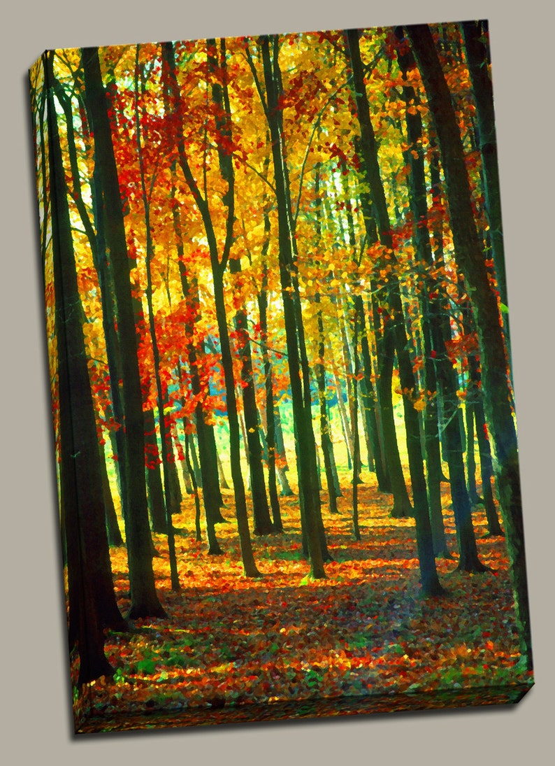 Autumn in the Woods Gallery Wrap Canvas Photo Print Fine Wall image 0