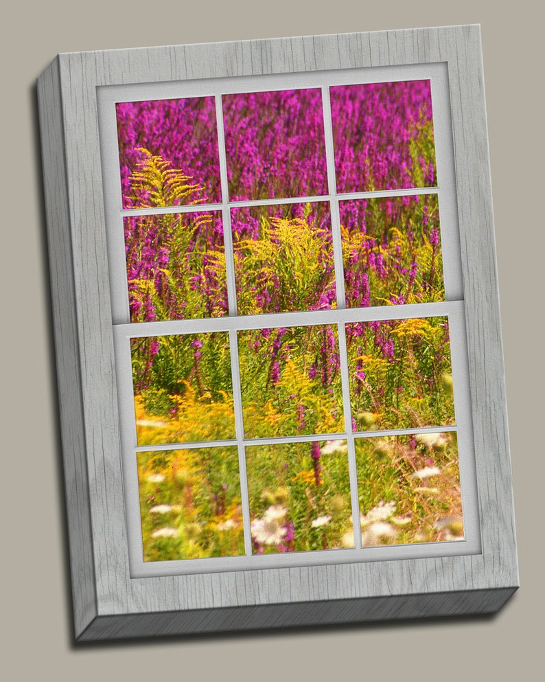 Field of Flowers Faux Window Gallery Wrap Canvas Photo Print image 0