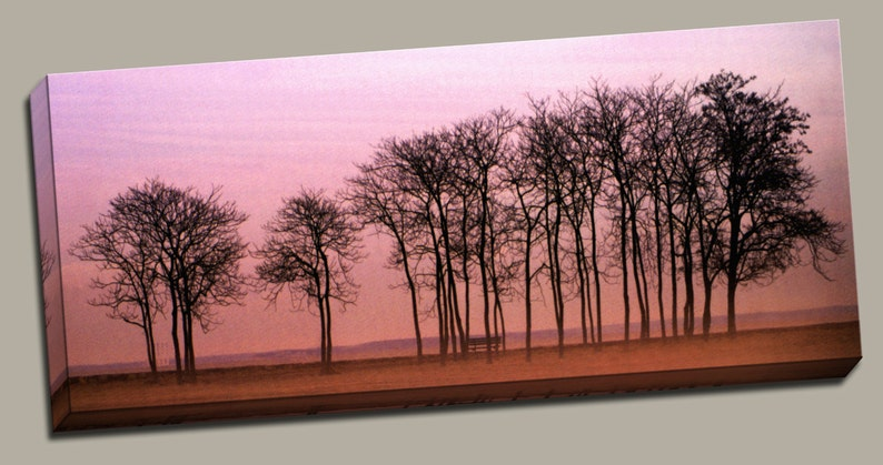 Sunset Trees Gallery Wrap Canvas Photo Print Fine Wall Art image 0