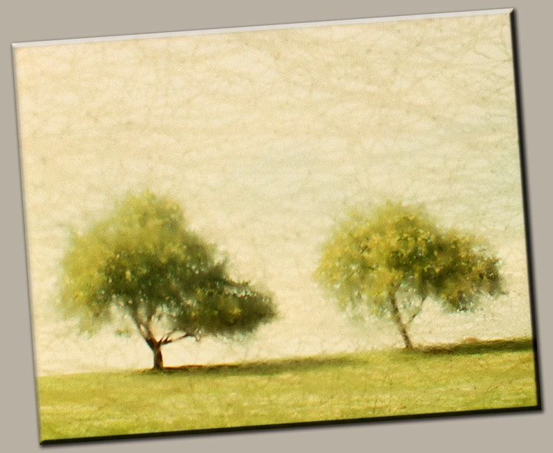 Twin Trees Gallery Wrap Canvas Photo Print Fine Wall Art image 0