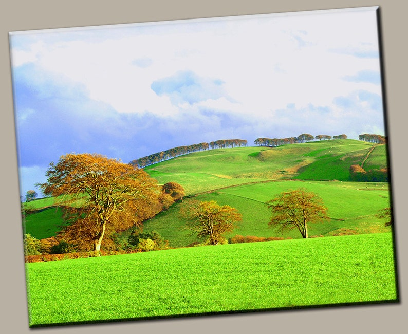 Rolling Hills Gallery Wrap Canvas Photo Print Fine Wall Art image 0