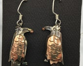 Copper winged Raven with berry