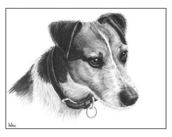 Jack Russell Terrier cards and prints from original pet portrait by Helen H. Conrad.  Greeting cards also available.