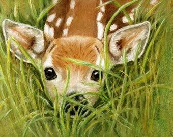 Fawn Surprise Cards and Prints from Original Pastel Painting
