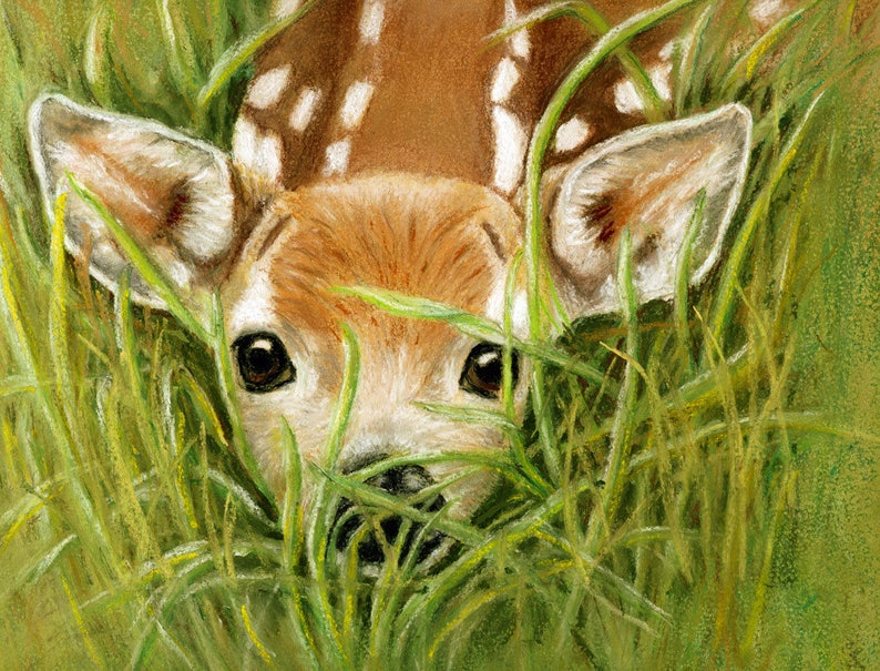 Fawn Surprise Cards and Prints from Original Pastel Painting image 0