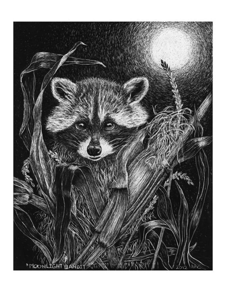 Mischievous Raccoon Cards & Prints from Original Scratchboard image 0