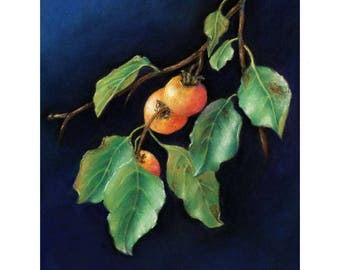 Persimmon Cards & Prints from Original Botanical Painting