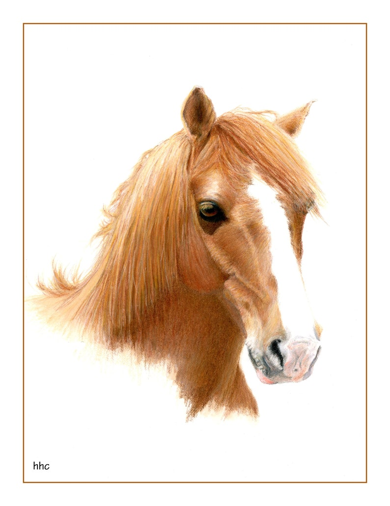 Pony Cards & Prints from Original Painting by Helen H. Conrad image 0