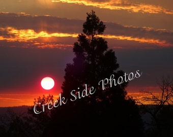Instant Digital Download, Sunset, Juniper Tree, Clouds, Nature Photography, Nature, Wall Art