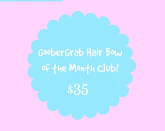 6 month GooberGrab Hair Bow of the Month Club!