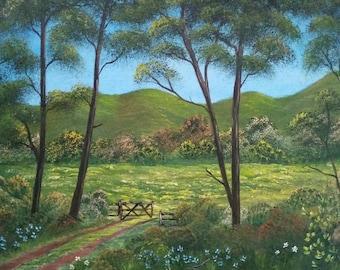 Sun Kissed Meadow