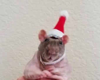 Christmas Rat Hat