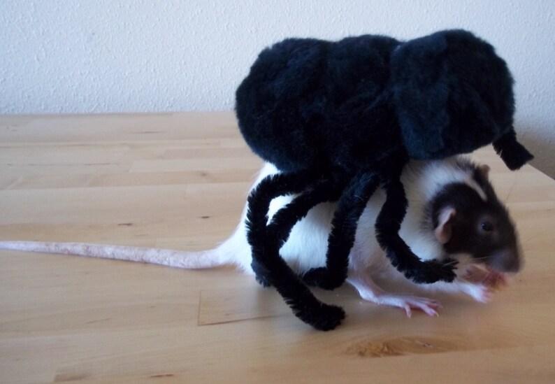 Rat Spider Costme