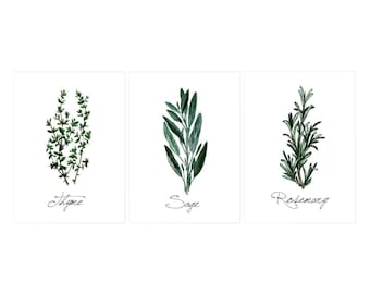 Kitchen Herbs - set of 3 watercolor prints - Rosemary, Sage, Thyme.