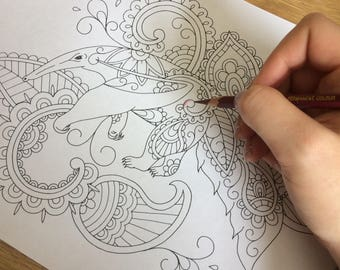 Adult Colouring Page, Ant Eater, Coloring