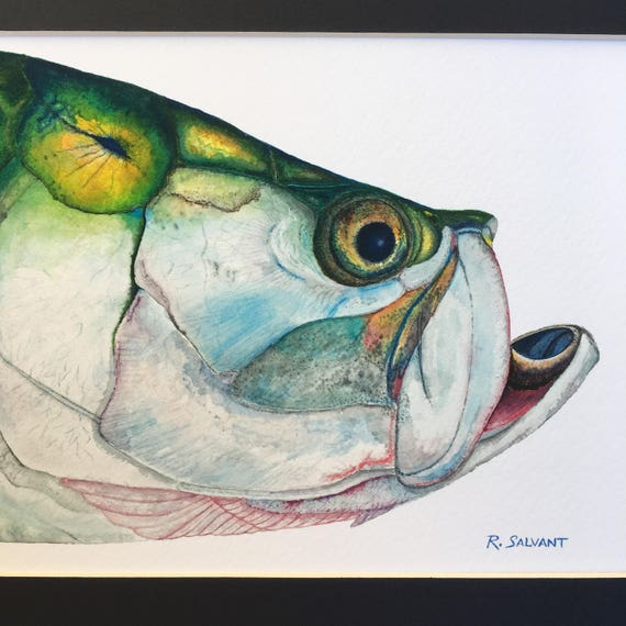 Poster Weights Etsy: Tarpon Watercolor Print On Heavy Weight Cold Press Paper