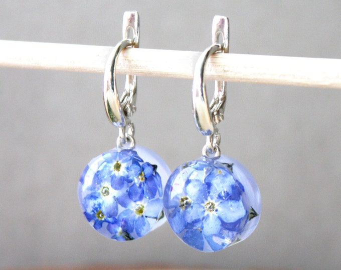 Small Sterling Silver Resin Earrings with Real Blue Forget me not flowers. Nature Eco Gift