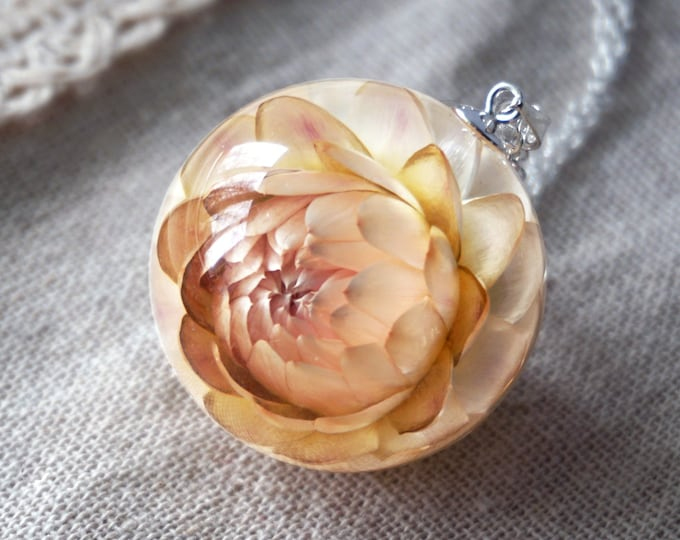 Botanical necklace with Real Everlasting Helichrysum flower. Resin sphere Pendant with cream color Helichrysum. 30 mm