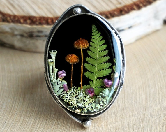 Forest ring with real mushrooms, lichens, fern and heather.