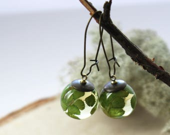Real Maidenhair Fern Earrings. Unique Resin Sphere Orb Globe Earrings. Pressed leaf necklace. Nature earrings. Gift for woman. Gift for Her.