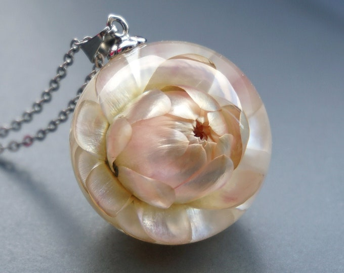 Botanical necklace with Real Everlasting Helichrysum flower. Resin sphere Pendant with cream color Helichrysum. 27 mm
