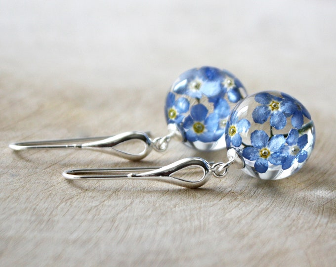 Sterling Silver Earrings with Real Blue Forget me not flowers.