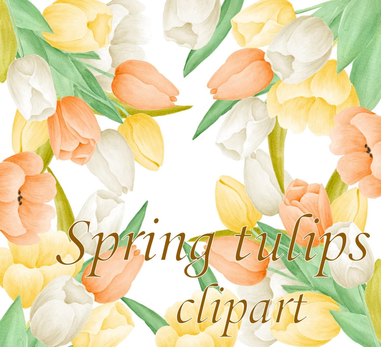 Spring Tulip Clipart Flower Clipart Spring Flowers Clip Art Etsy