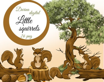Squirrel clipart, Nuts illustration, Autumn clipart, watercolor illustration, commercial use, Print on Demand, Sublimation design