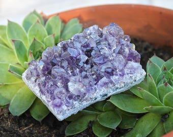 100g Amethyst Cluster Specimen, Pagan, Quartz Crystal Healing Stone, Raw Amethyst Chunk, Wiccan Altar Supplies, Wicca Altar Crystal Cluster