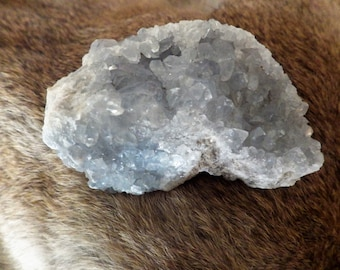 Celestite Druze Cluster   Crystals Energy