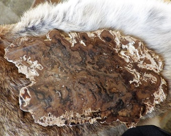 Raw Natural Brown Jasper and Chalcedony Slice - The Earth Stone   Energy Stones  Meditation Stones  Altar Stones