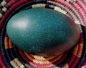 Emu Egg Shaker - rattle, instrument, real egg, dragon egg, ceremonial egg